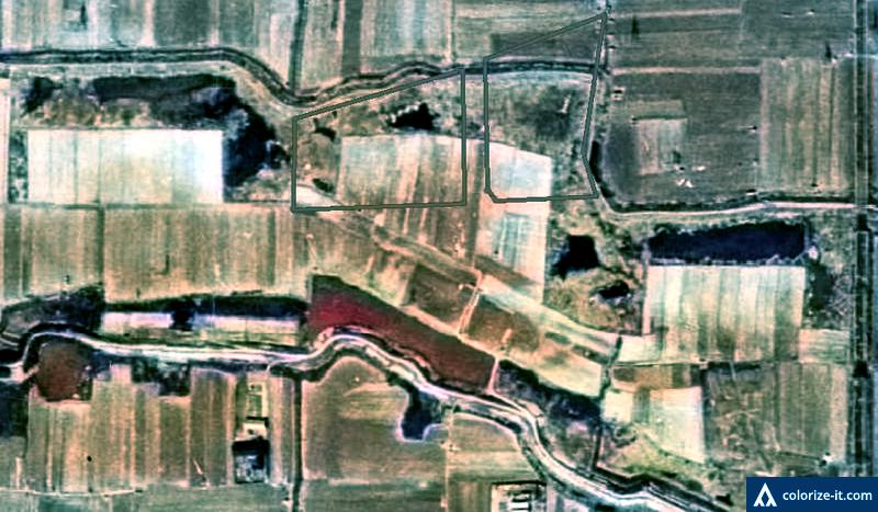 noda1947_color.png